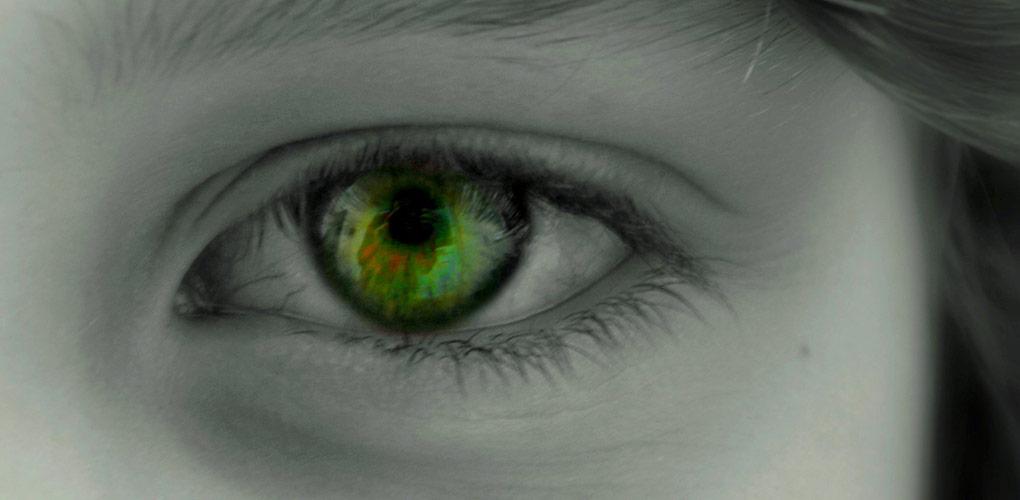 青い目茶色い目